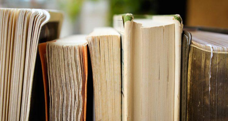 Lesen videmusart