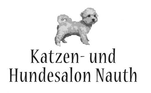 nauth-logo