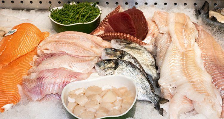 Fisch Jackob